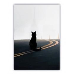 Mole gatto